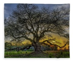 Ancient Live Oak Tree Fleece Blanket