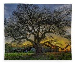 Ancient Live Oak Tree Fleece Blanket