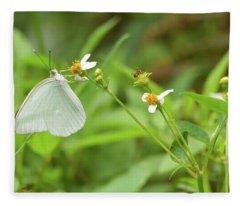 Angel-winged Butterfly Fleece Blanket