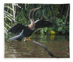 Anhinga Costa Rica Fleece Blanket