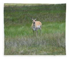 Prong Horned Antelope Lake John Swa Co Fleece Blanket