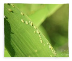 Aphid Family Fleece Blanket