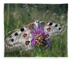 Apollo Butterfly - Parnassius Apollo 2 Fleece Blanket