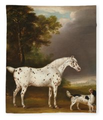 Appaloosa Horse And Spaniel Fleece Blanket