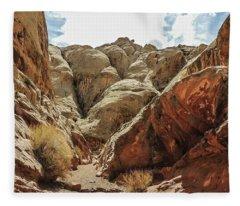 Approaching Narrows Of Bell Slot Canyon Fleece Blanket