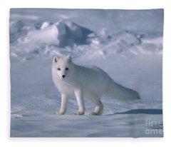 Arctic Fox On The North Slope Fleece Blanket