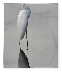 Argent Mirror #2 Fleece Blanket