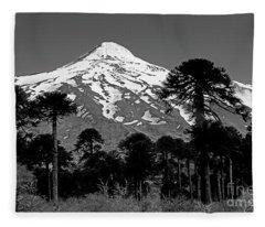 Argentina_1-5 Fleece Blanket