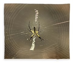 Argiope Spider And Web Fleece Blanket