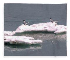 Arctic Terns On A Bergy Bit Fleece Blanket