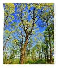 Artsy Tree Series, Early Spring - # 04 Fleece Blanket
