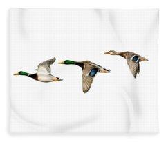 Flying Mallards Fleece Blanket