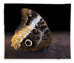 Yellow-edged Giant Owl Butterfly Fleece Blanket