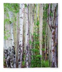 Aspen Grove In The White Mountains Fleece Blanket