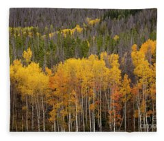 Aspen Grove Fleece Blanket
