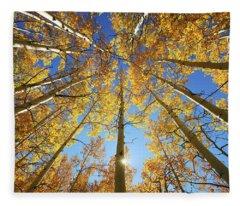 Aspen Tree Canopy 2 Fleece Blanket