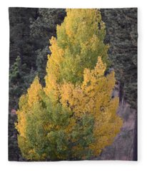 Aspen Tree Fall Colors Co Fleece Blanket