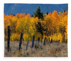 Aspens And Fence Fleece Blanket
