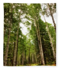 Fleece Blanket featuring the photograph Aspens Galore by Rick Furmanek
