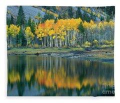 Aspens In Fall Color Along Lundy Lake Eastern Sierras California Fleece Blanket
