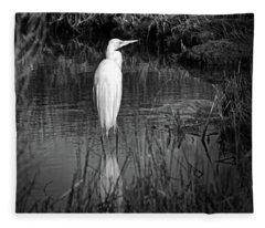 Assateague Island Great Egret Ardea Alba In Black And White Fleece Blanket