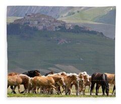 Castelluccio Di Norcia, Parko Nazionale Dei Monti Sibillini, Italy Fleece Blanket