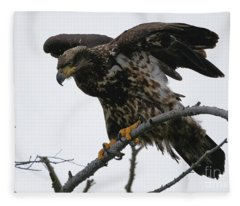 At The Ready - Bald Eagle Fleece Blanket