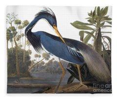 Audubon Heron, 1827 Fleece Blanket