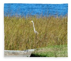Audubon Park Sighting Fleece Blanket