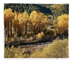Autumn Along The River IIi Fleece Blanket