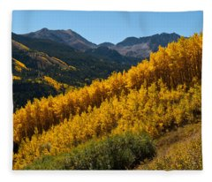 Autumn Aspen Near Castle Creek Fleece Blanket