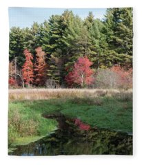 Autumn At The River Fleece Blanket