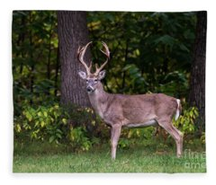 Autumn Buck Fleece Blanket