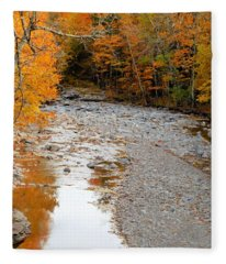 Autumn Creek 9 Fleece Blanket