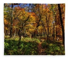 Autumn Forest Path At Johnson's Mound Fleece Blanket