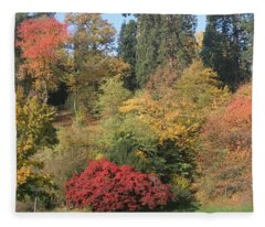 Autumn In Baden Baden Fleece Blanket