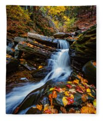 Autumn In The Catskills Fleece Blanket