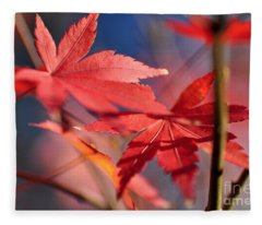Autumn Maple Fleece Blanket