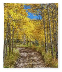 Autumn On Medano Pass Fleece Blanket