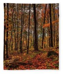 Autumn On The Ice Age Trail Fleece Blanket