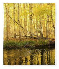 Autumn Soft Light In Stream Fleece Blanket