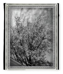 Autumn Tree At Jim Beam In Black And White With Black Border Fleece Blanket