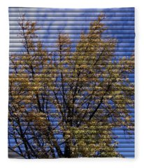 Autumn Tree At Jim Beam - Through The Blinds Fleece Blanket