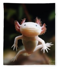 Axolotl Face Fleece Blanket