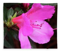 Azalea 2018 Fleece Blanket