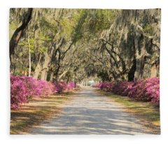 azalea lined road in Spring Fleece Blanket