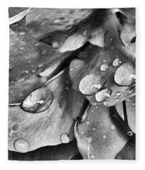 Azalea Rain Drops 3 Fleece Blanket