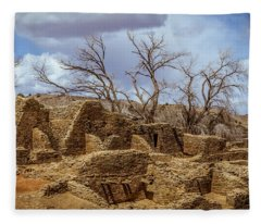 Aztec Ruins, New Mexico Fleece Blanket