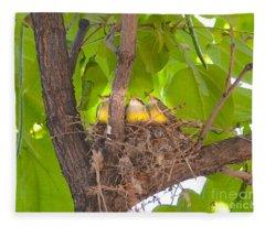 Baby Birds Waiting For Mom Fleece Blanket