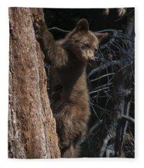 Baby Black Bear In High Sierras Fleece Blanket